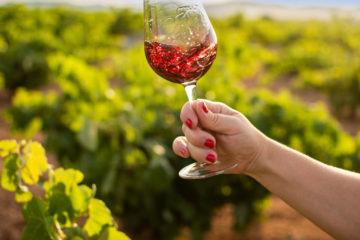 10 mitos del vino